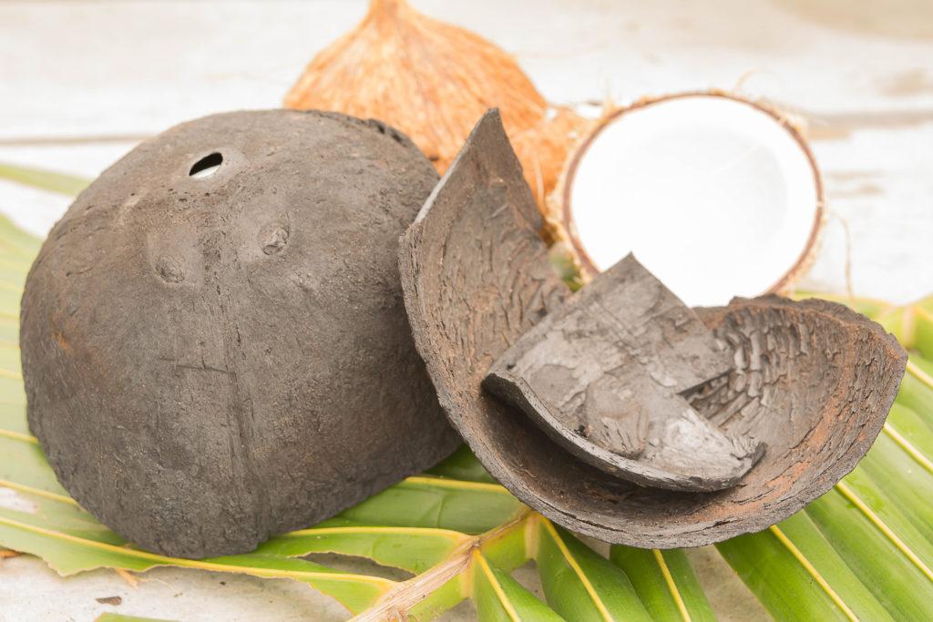 Aus verkohlten Kokosnuss-Schalen wird Aktivkohle für Wasserfilter hergestellt.